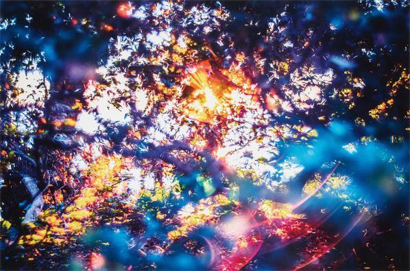 Yosuke Takeda-Stay Gold 144540 From Digital Flare-2014