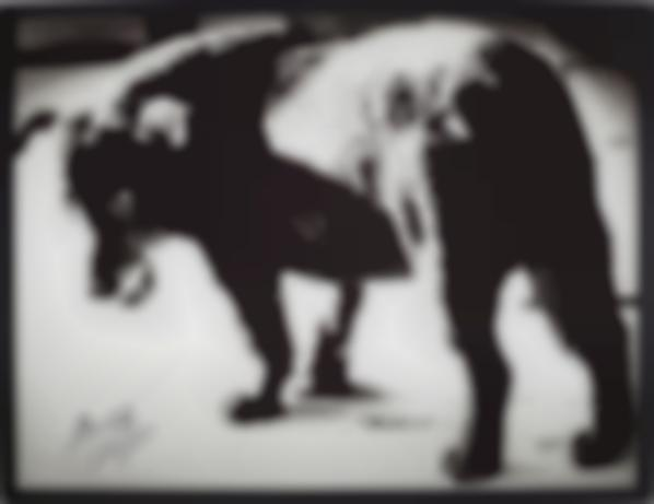 Daido Moriyama-Stray Dog, Misawa-1971