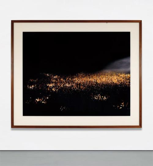 Andreas Gursky-May Day II-1998