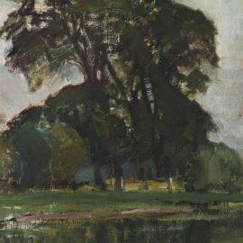 Piet Mondrian-Landzicht Boerderij Met Witte Lucht-1905