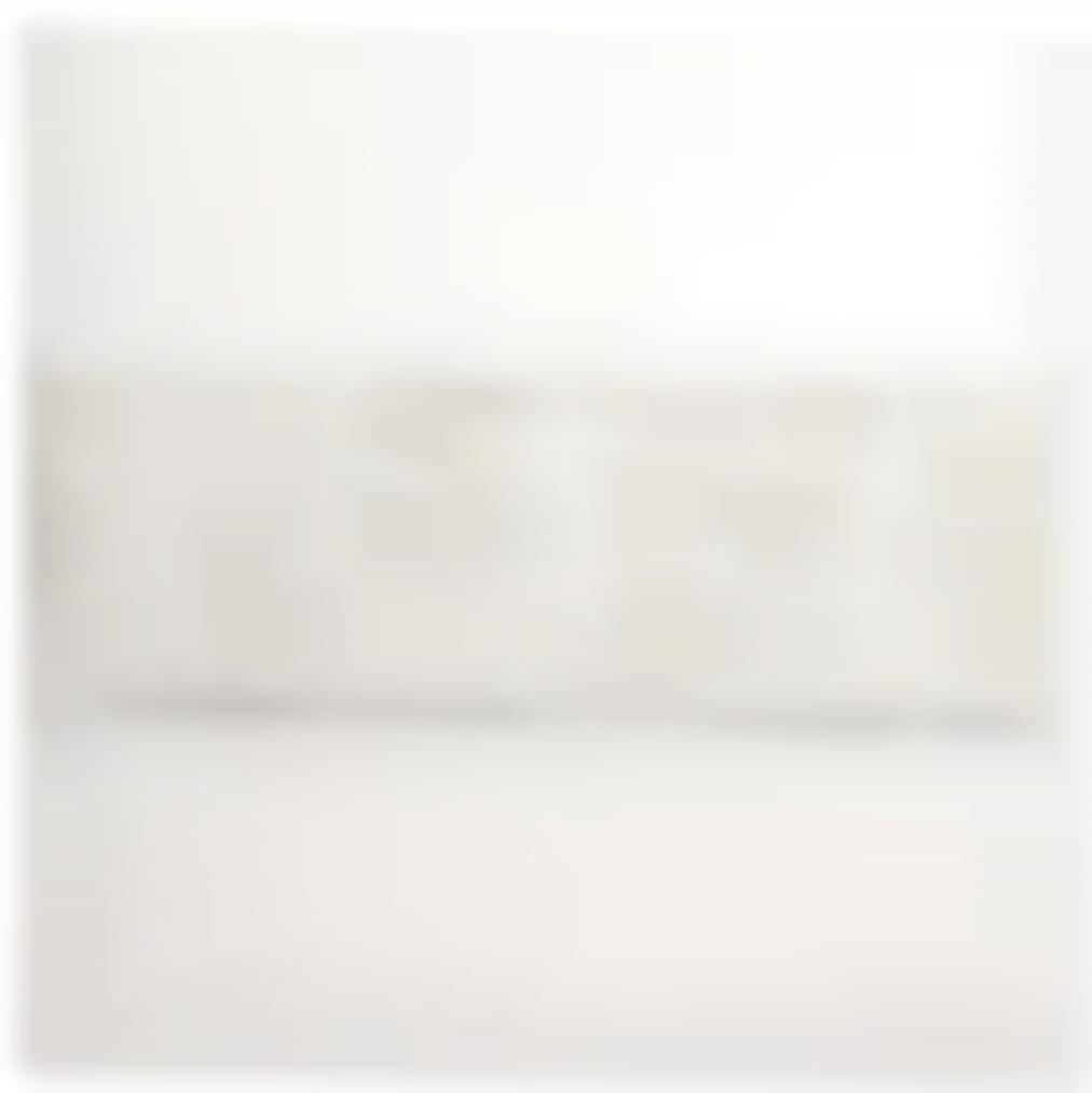 Jan Schoonhoven Jr. - Homage A Manzoni (Homage To Manzoni)-2012