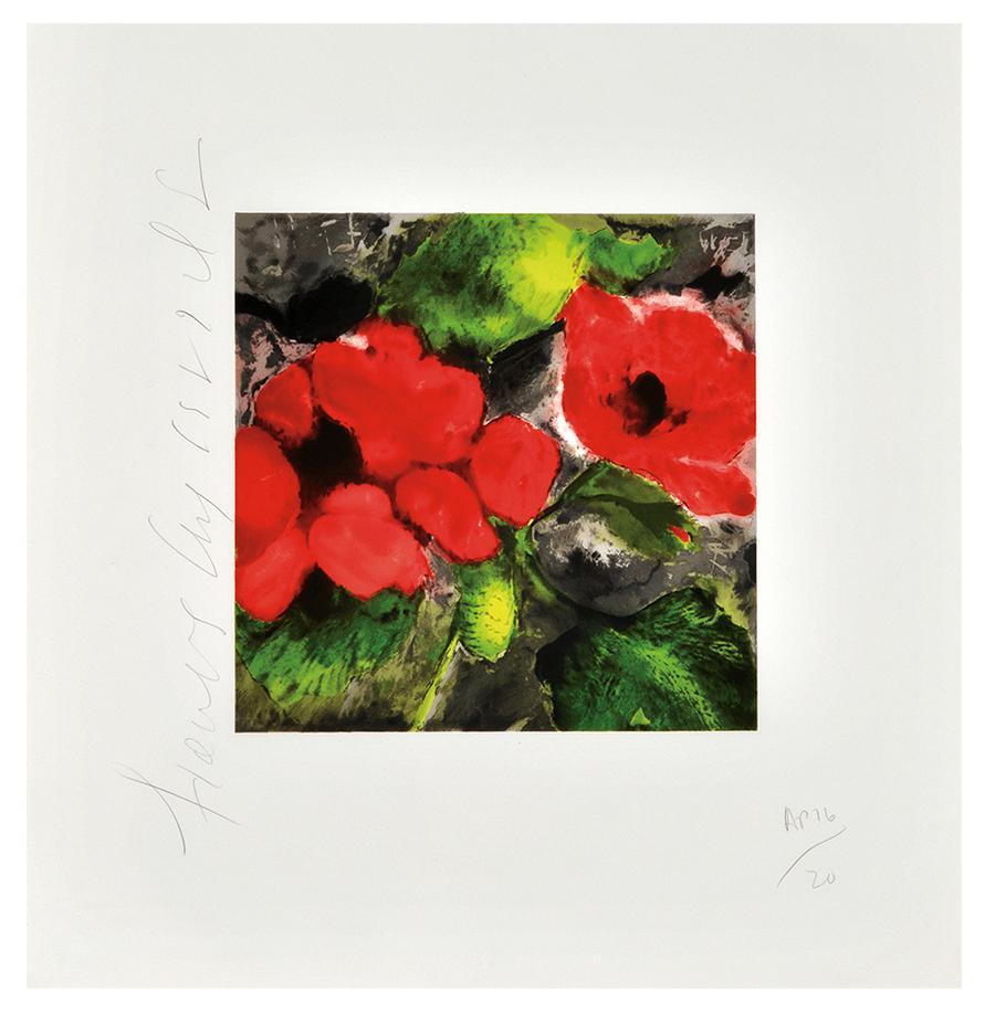 Donald Sultan-Fruits And Flowers Portfolio-1991
