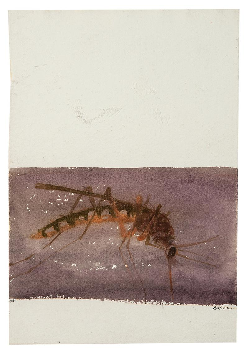 Leonard Baskin-The Muskellunge; The Mosquito (From Under The North Star) (2)-1980