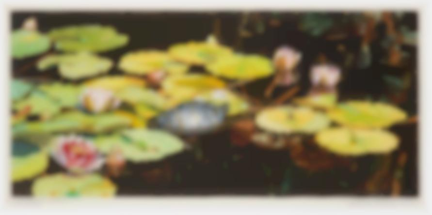 Shirley Pettibone - Lily Pond With Turtle-1979