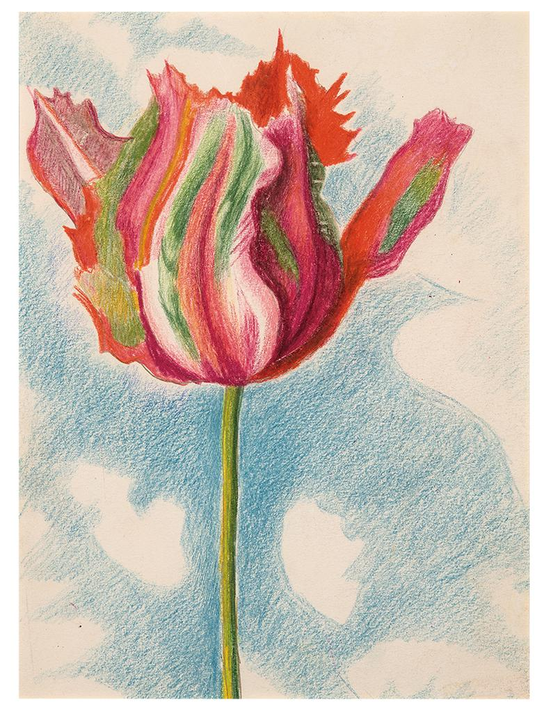 Joseph Stella - Red And Green Parrot Tulip-
