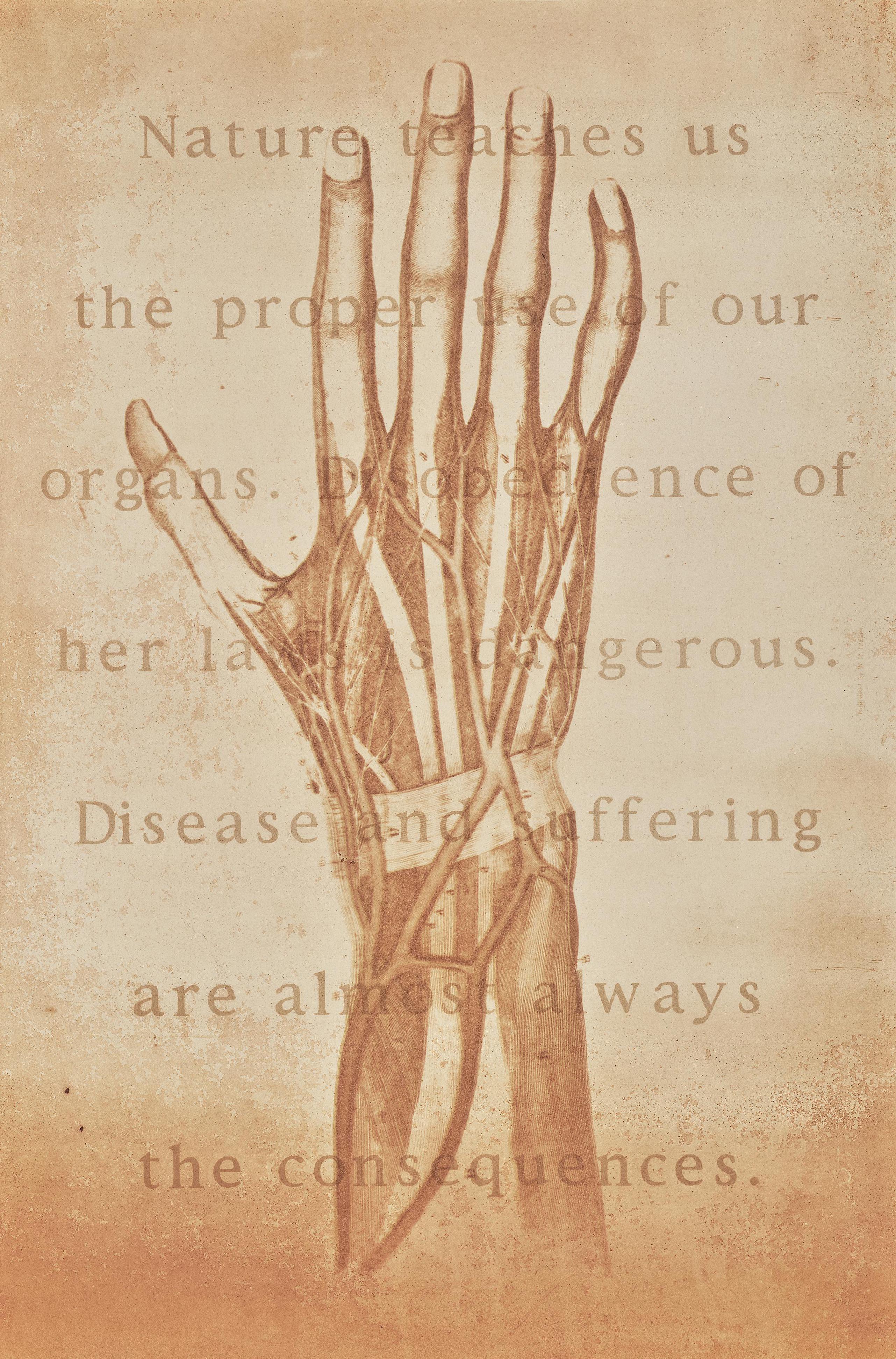 Kimberly Austin - Nature Seaches Us (Hand)-2000