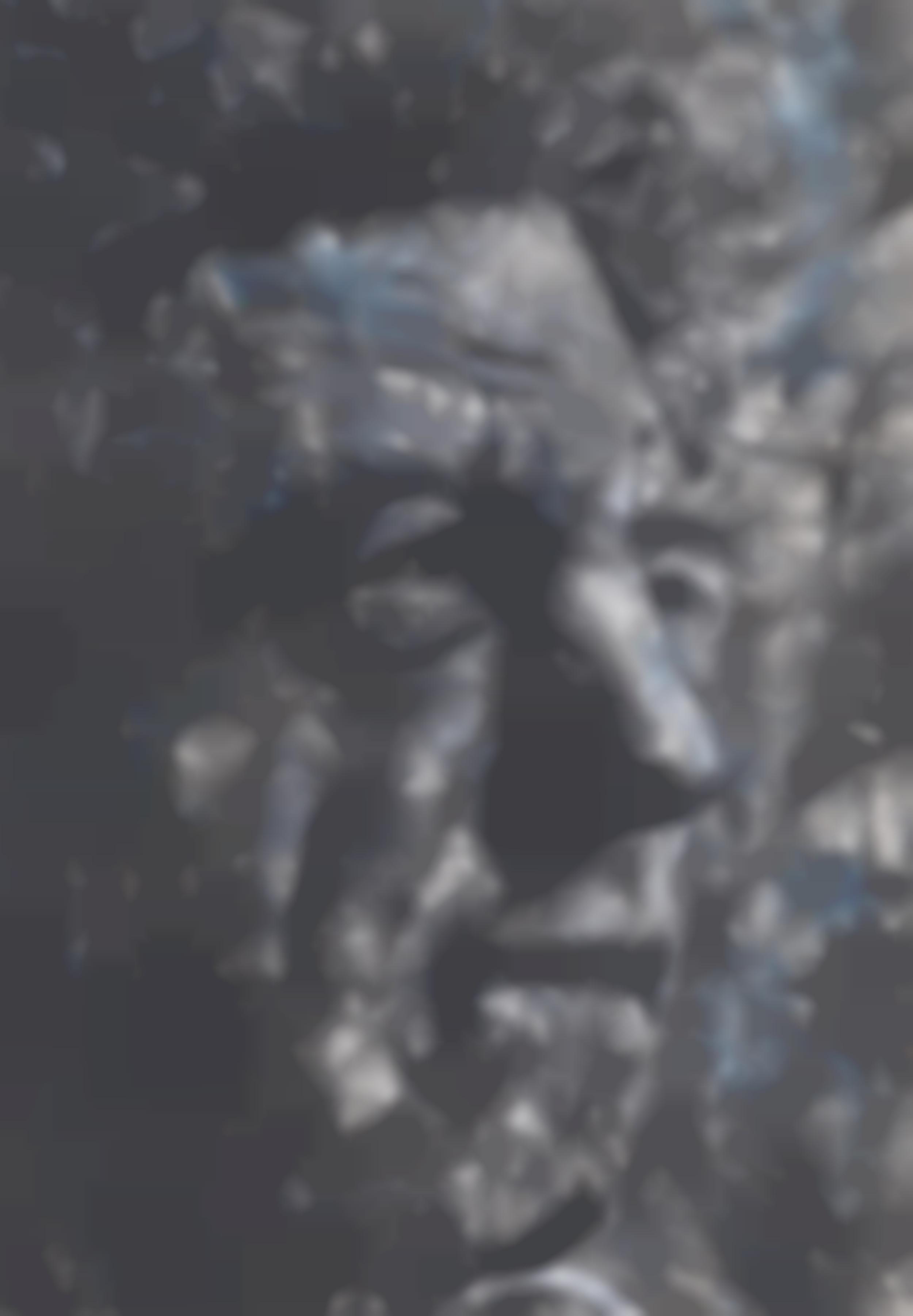 Dieter Noss-Portrat Alberto Giacometti-2017