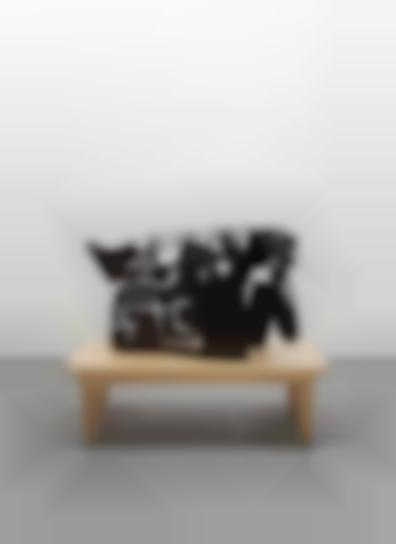 Carroll Dunham-Captured Shadows: 4-A-2004