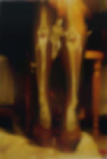 Elke Krystufek-Youthquaker-1995