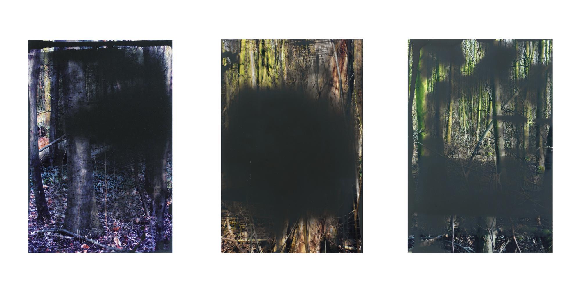 Gerhard Richter-I. Wald, II. Untitled (2.2.08), III. Grauwald III. Wald II-2008