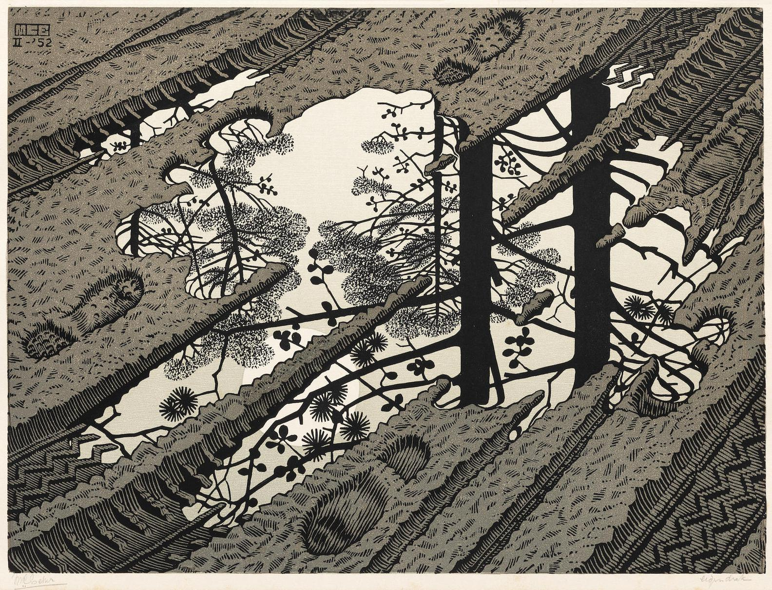 Maurits Cornelis Escher-Puddle (Bool 378)-1952