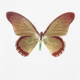 Damien Hirst-The Souls IV - Chilli Red/Oriental Gold/Leaf Green-2010