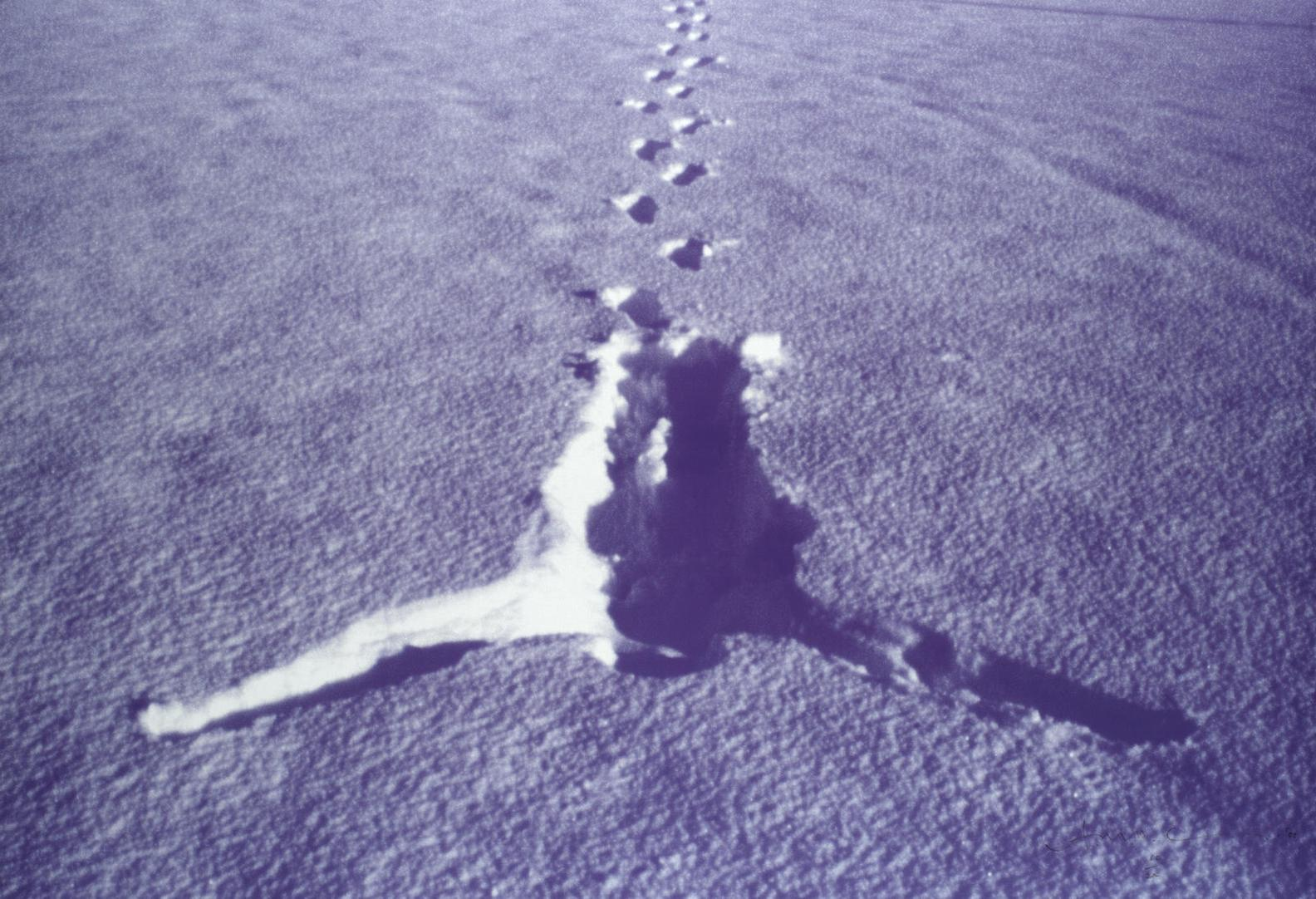 Antony Gormley-Snowfall-2002