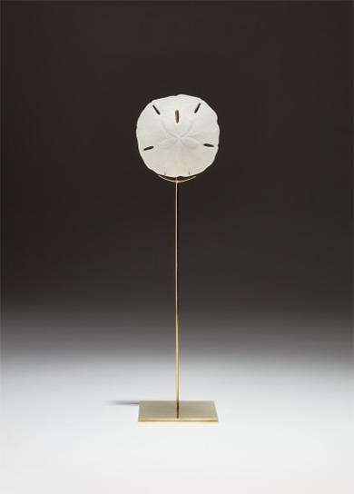 Carol Bove-Sand Dollar Sculpture-2008
