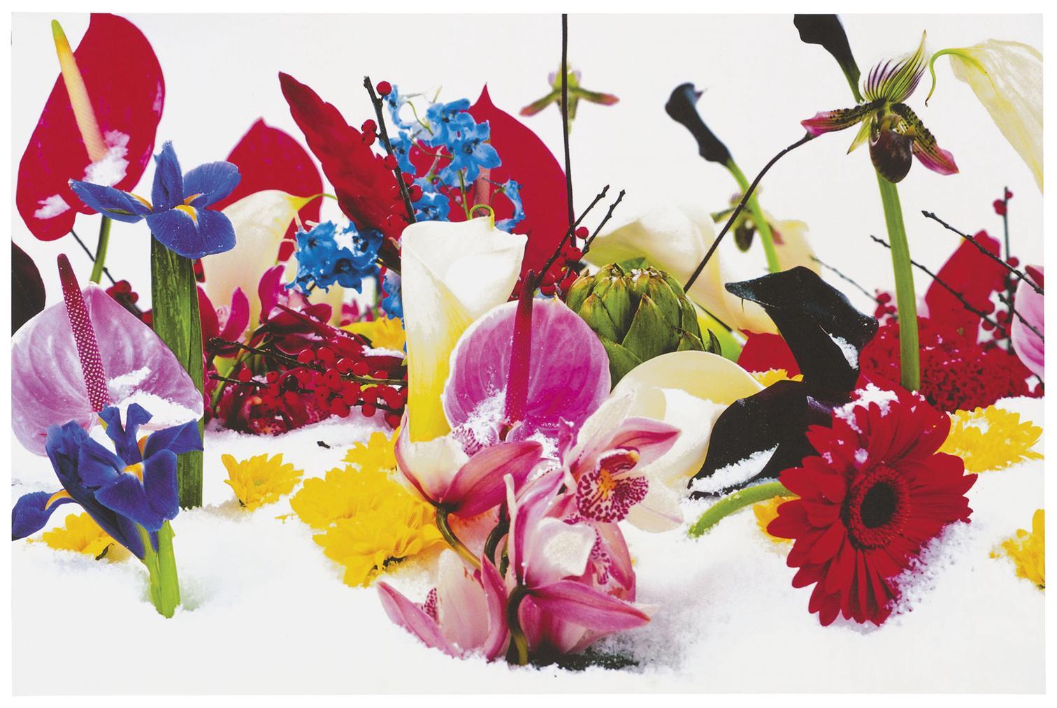 Marc Quinn-Winter Garden: Two Plates-2004