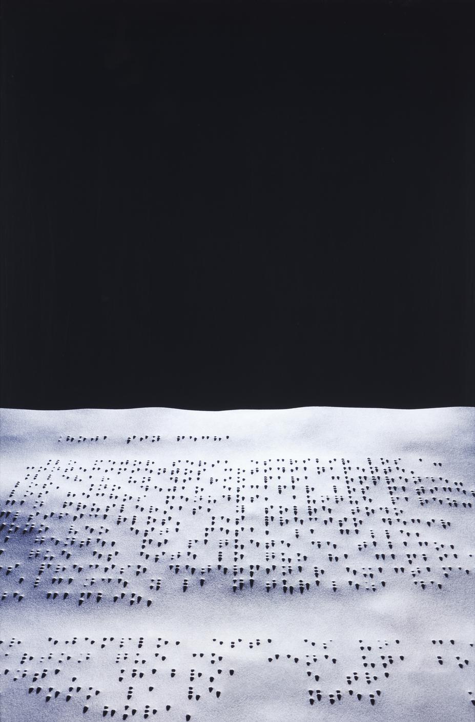Joan Fontcuberta-Nausee (Sartre)-1999