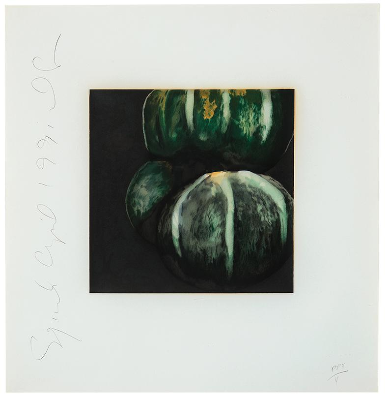 Donald Sultan-Squash (From Fruits And Flowers)-1991