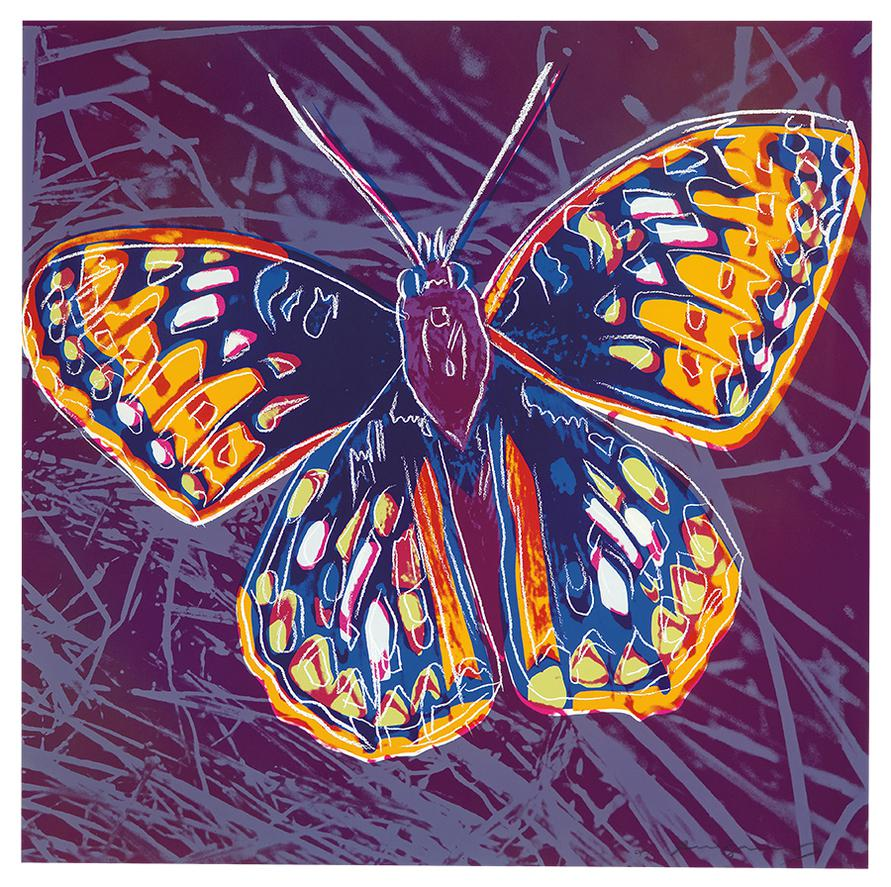 Andy Warhol-San Francisco Silverspot (From Endangered Species Portfolio)-1983