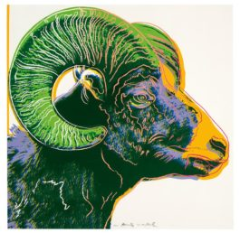 Andy Warhol-Bighorn Ram (From Endangered Species Portfolio)-1983