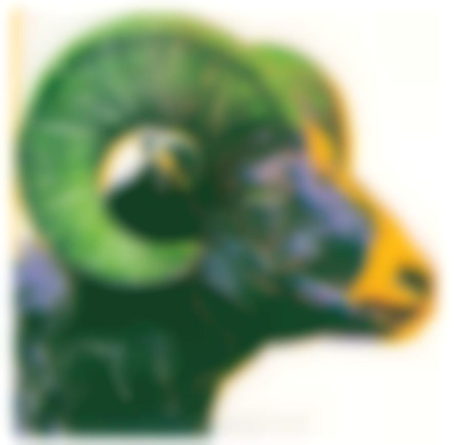 Andy Warhol-Bighorn Ram (From Endangered Species Portfolio)-1983