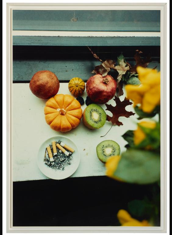 Wolfgang Tillmans-Last Still-Life, Ny-1995