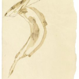 Joseph Beuys-Angstsprung Des Elektrisierten Fuchses (The Electrified Fox Jumping In Fear)-1953