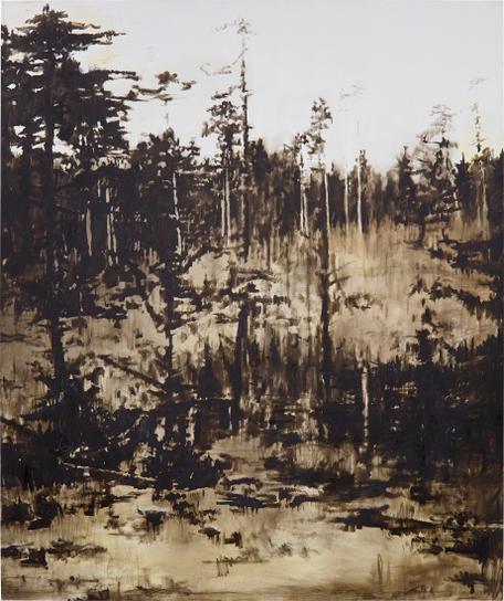 Florian Sussmayr - Untitled-2007
