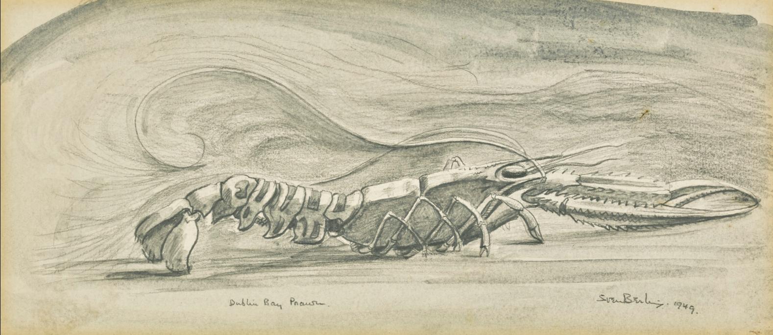 Sven Berlin-Dublin Bay Prawn-1949