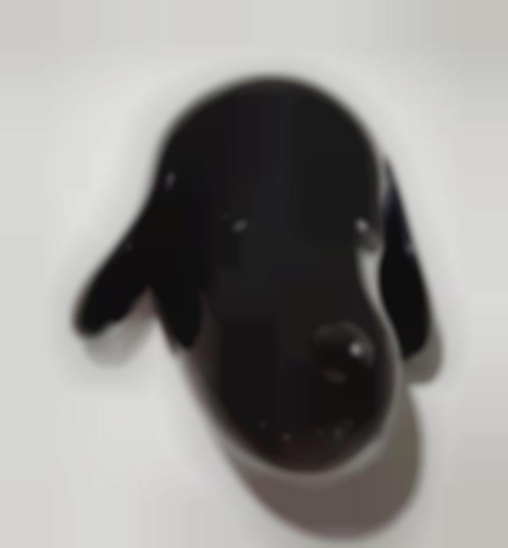 Yoshitomo Nara-Big Pup Head-2007