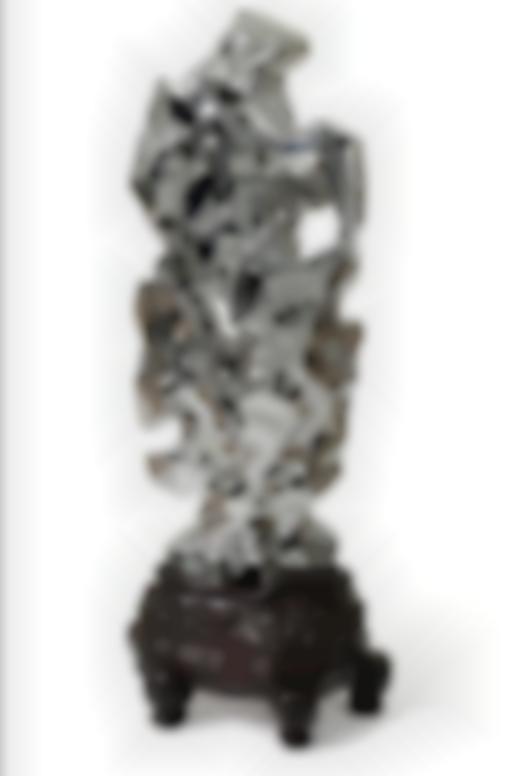 Zhan Wang-Artificial Rock No. 76-2006