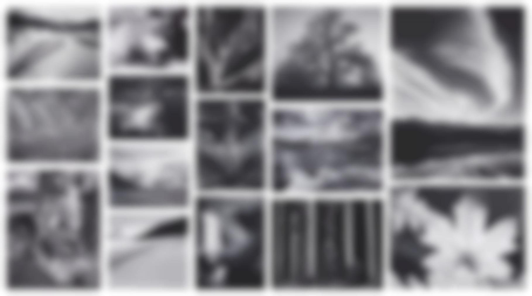 Ansel Adams-Portfolio Four: What Majestic Word, In Memory Of Russell Varian-