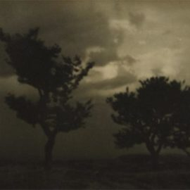 Josef Sudek-Untitled (Landscape With Trees)-1924