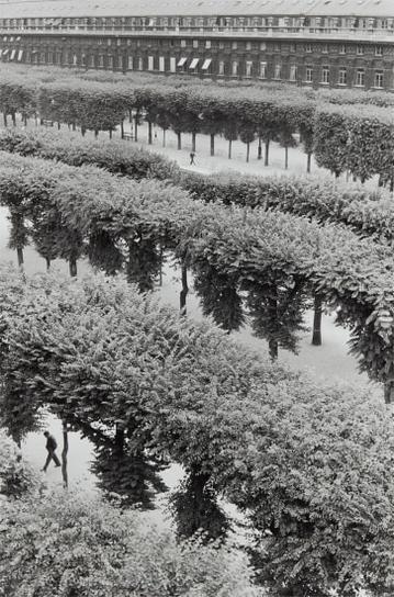 Henri Cartier-Bresson-Gardens Of The Palais Royal, Paris-1959
