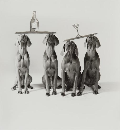 William Wegman-Cocktails-1995