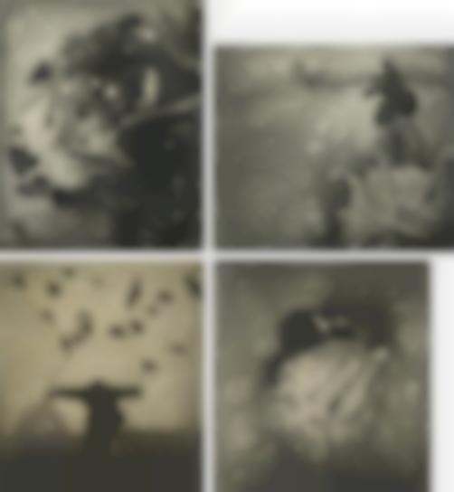 Robert ParkeHarrison-Selected Images-2000
