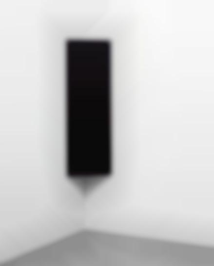 Liz Deschenes-Shift/ Rise #35-2012