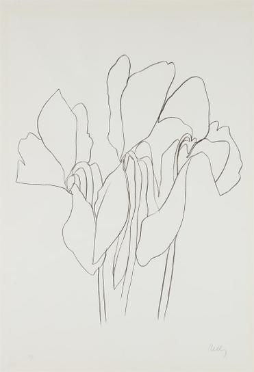Ellsworth Kelly-Cyclamen V, From Suite Of Plant Lithographs-1965