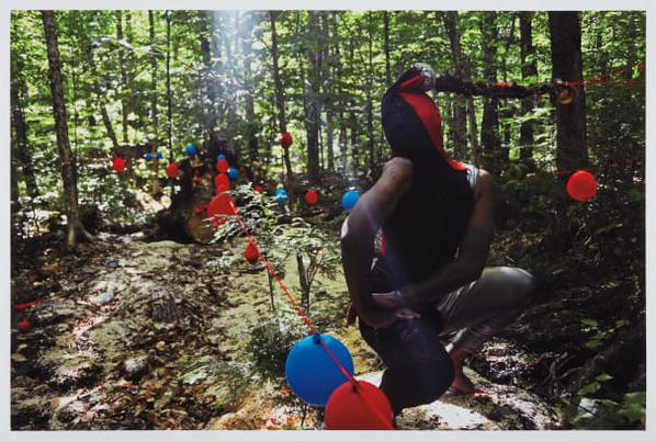 Jacolby Satterwhite - The Robin-2009