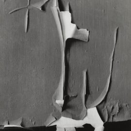 Minor White-Peeled Paint, Rochester-1959