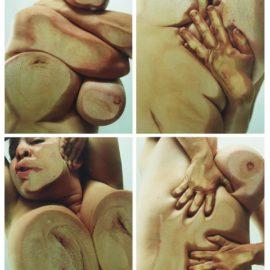 Jenny Saville-Closed Contact-2002