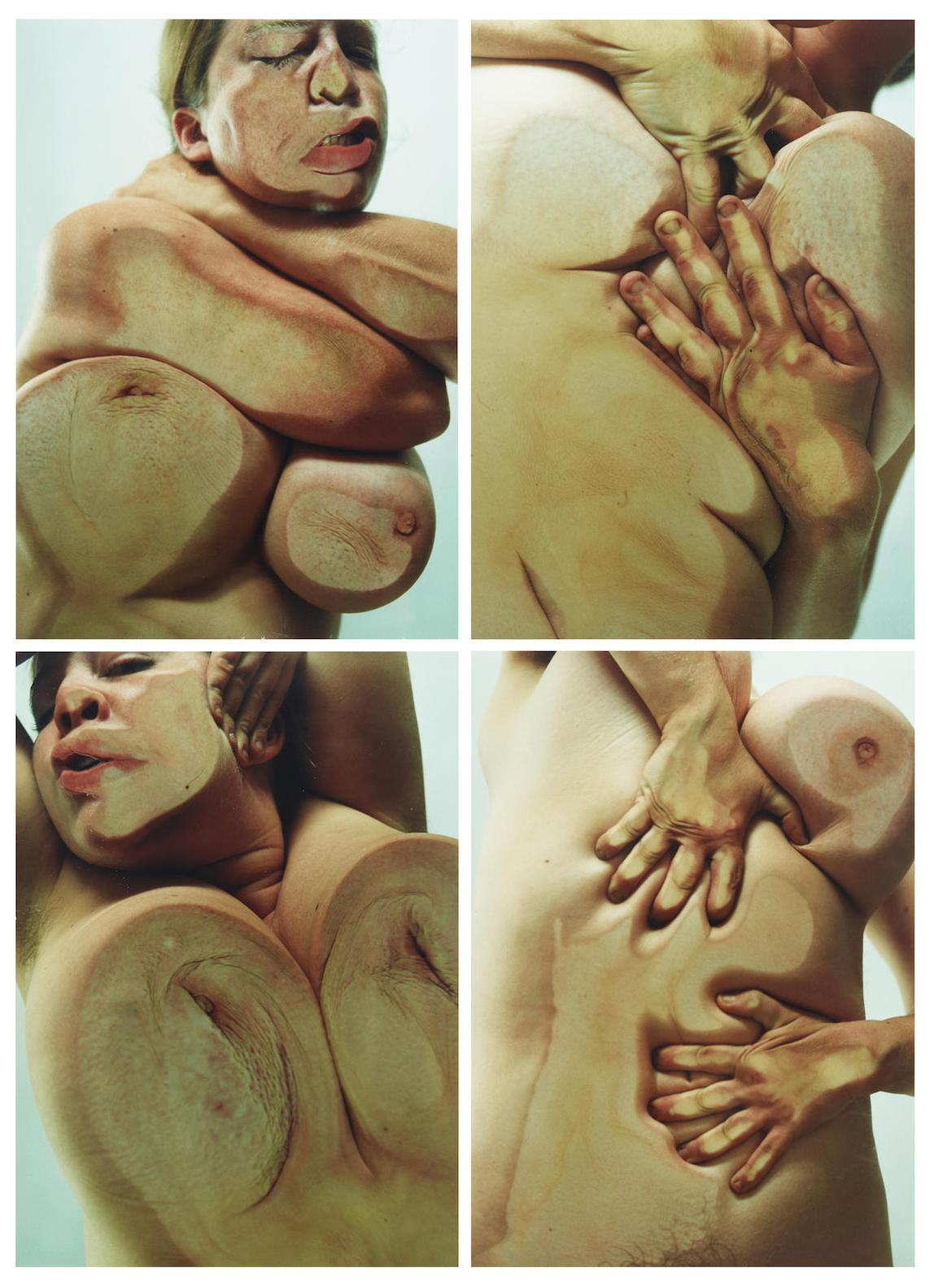 Jenny Saville-Closed Contact-2002