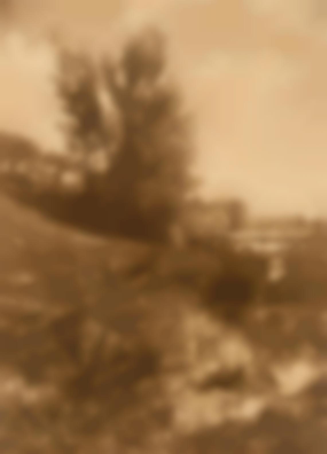 Heinrich Kuhn-Untitled (Landscape)-1905