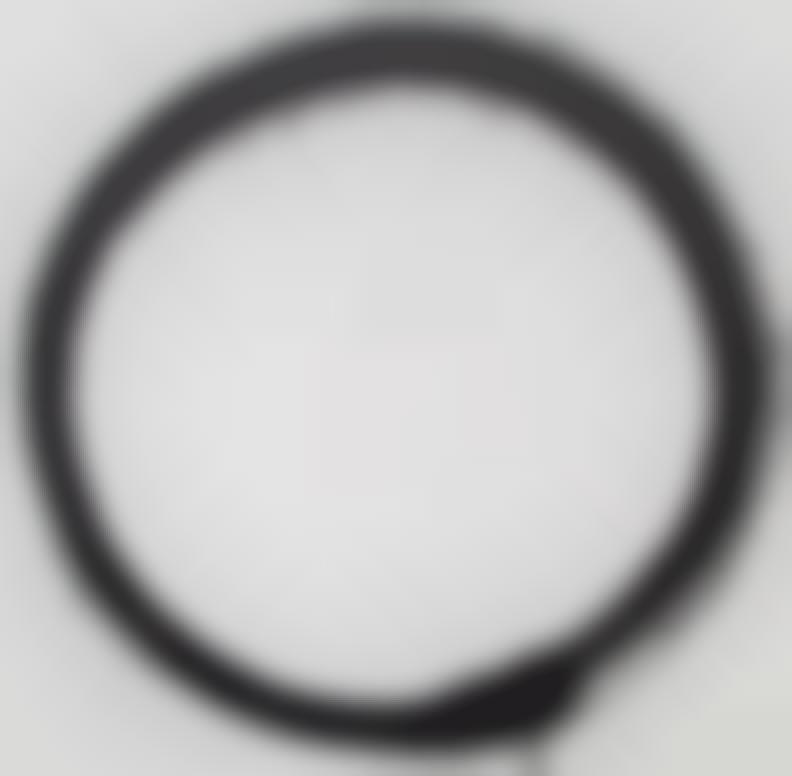 Takashi Murakami-Enso: Tranquility-