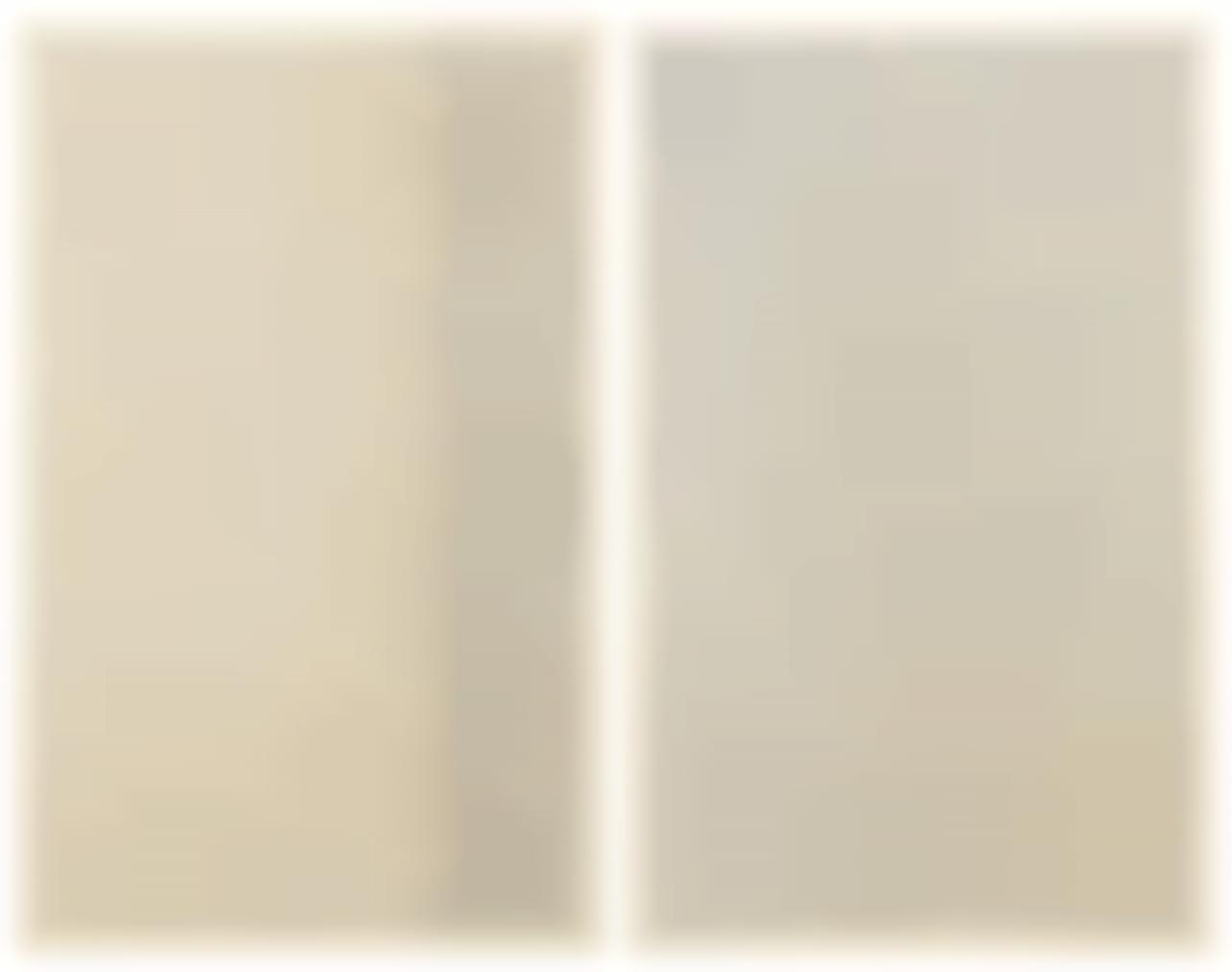 Jan Schoonhoven-(I) T71-20; (II) T71-21-1971