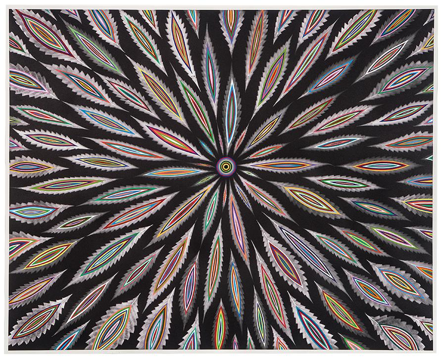 Fred Tomaselli-Bloom (March 12)-2017