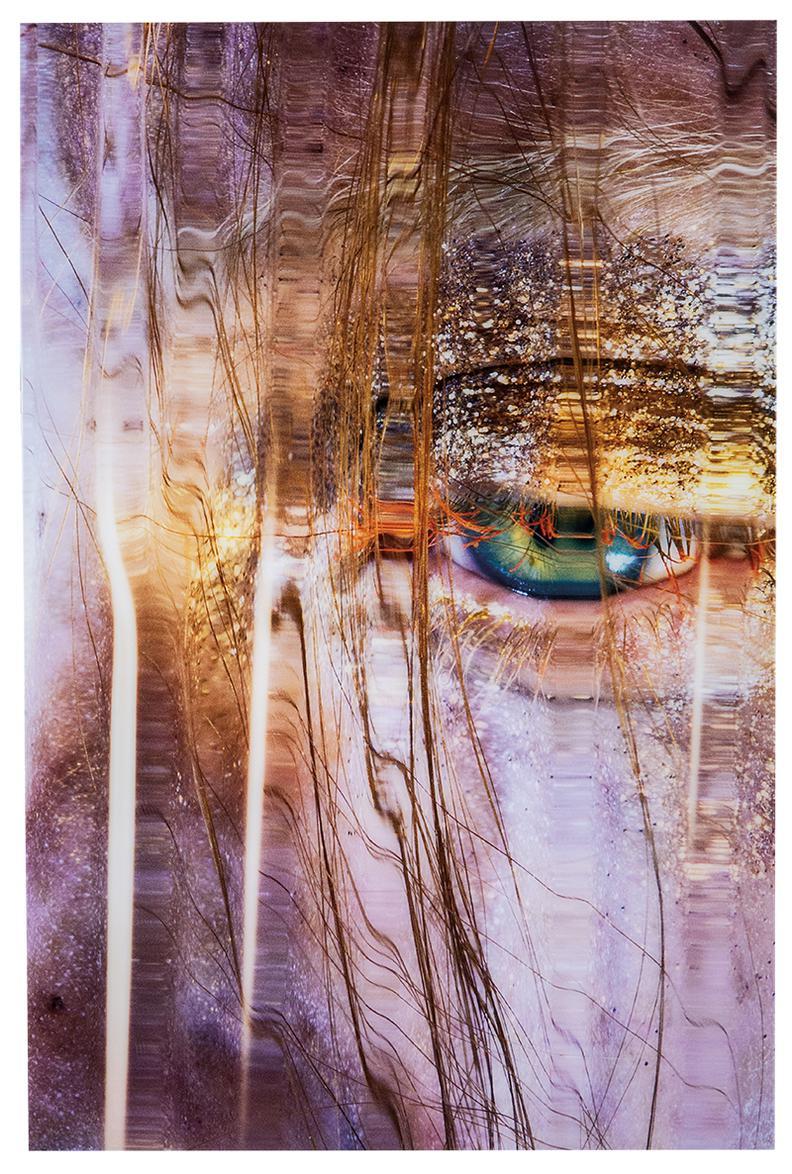 Marilyn Minter-Siren-2014