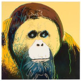 Andy Warhol-Orangutan (From Endangered Species Portfolio)-1983