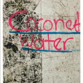 Oscar Murillo-Coconut Water-2012