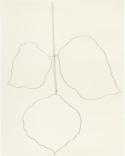 Ellsworth Kelly-Coral Leaf (1)-1987