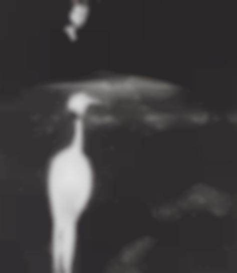 Bill Brandt-Evening In Kew Gardens-1935